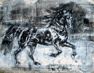 12 cheval2