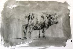 10x15cm on paper