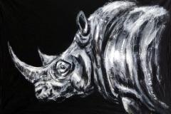 Rhino in the dark
