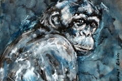 Monkey in blues